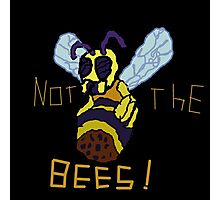 NOT THE MO' F****** BEES!!!!!!!!!!!!!!!!!!!!!!!! Photographic Print