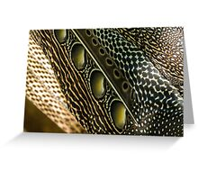 Argus pheasant wing feathers Greeting Card