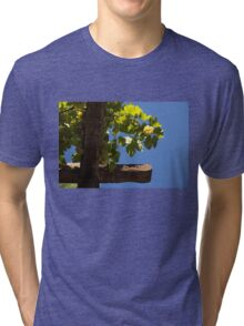 Harvest in the Sky Tri-blend T-Shirt