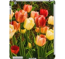 Impressions of Gardens - Particolored Vernal Tulips iPad Case/Skin