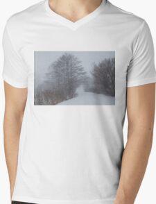 Snowstorm Magic Mens V-Neck T-Shirt
