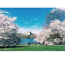 The Lake Central Park Photographic Print