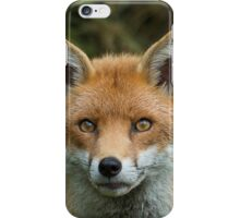 Red Fox portrait iPhone Case/Skin