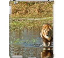 Lion crossing river iPad Case/Skin