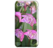 Australian Native Orchids. iPhone Case/Skin