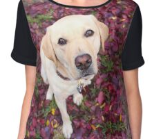 Lab in the Leaves Chiffon Top