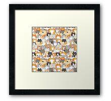 Cats, Kitties and a Spy Framed Print