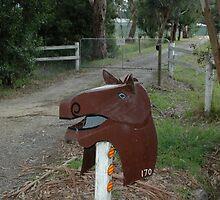 Horse Head Letterbox, Victoria, Australia by muz2142
