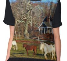 Equus Ferus Caballus - Horses | East Hampton, New York Chiffon Top