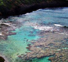 Hanauma Bay Reefs Sticker