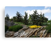 Rock Garden With Pines Canvas Print