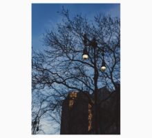 Elegant Period Lamps and Manhattan Skyscrapers Through the Tree Branches One Piece - Short Sleeve