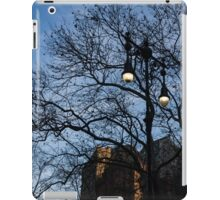 Elegant Period Lamps and Manhattan Skyscrapers Through the Tree Branches iPad Case/Skin