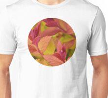 Orange Flame Spirea  Unisex T-Shirt