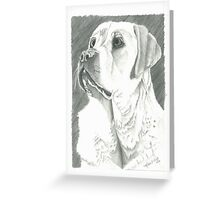 Charlie, Autism Trained Assistant Greeting Card