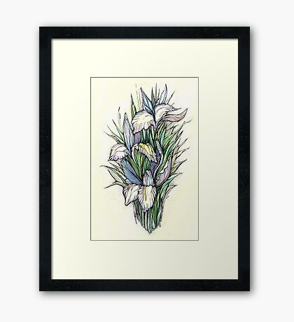 Beautiful iris - Hand draw  ink and pen, Watercolor, on textured paper Framed Print