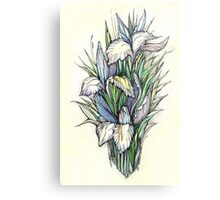 Beautiful iris - Hand draw  ink and pen, Watercolor, on textured paper Metal Print
