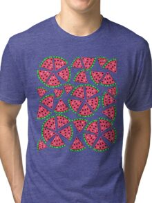 Watermelon Slice Party Tri-blend T-Shirt