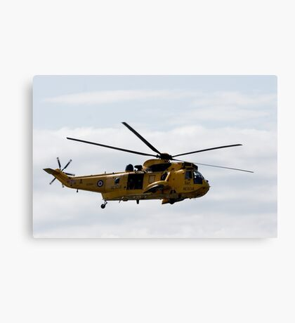 COMING TO THE RESCUE Canvas Print