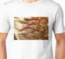 Dainty Branches - Warm Fall Colors - Washington, DC Facades Unisex T-Shirt