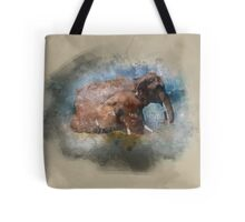 Badende Elefanten - Elephants in watercolour Tote Bag