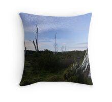 Middlesex Plains Throw Pillow