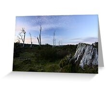 Middlesex Plains Greeting Card