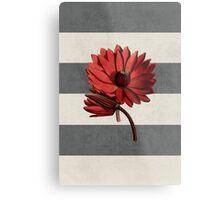 botanical stripes - red water lily Metal Print