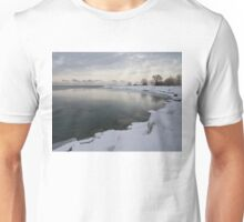 Cold, Gray and Transparent Unisex T-Shirt
