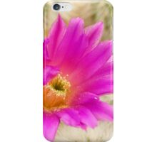 Desert Beauty iPhone Case/Skin
