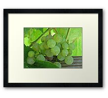 Hanging Around the Winery Framed Print