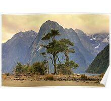 Milford Sound 3 Poster