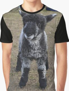 'Effie' Leicester longwool Lamb Graphic T-Shirt