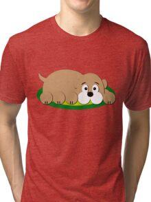 Cozy Dog Tri-blend T-Shirt