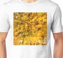 Look Up and Enjoy the Brilliant Autumn Colors Unisex T-Shirt