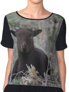 Manx Loaghtan Lamb Chiffon Top