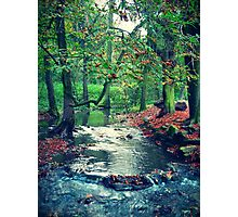 Cold stream Photographic Print