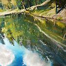 mirroring of thoughts by Roman Burgan