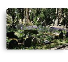 Bluebell patch Canvas Print