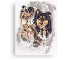 Collie /Ghost Canvas Print