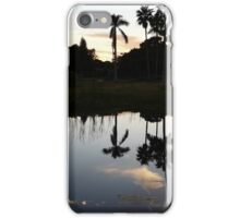 Silhouetted Reflection iPhone Case/Skin