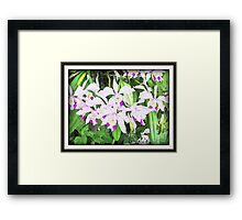 Surreal Asian Orchid Framed Print