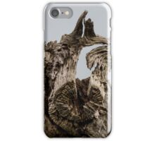 Dead wood tree close up iPhone Case/Skin