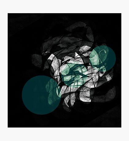scenes. nautilus. Photographic Print