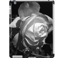 "Photo product: ""Shadows Are Evidence of Light"" iPad Case/Skin"