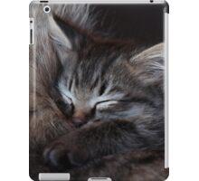 Sleeping Kitten iPad Case/Skin