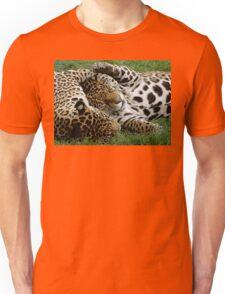 Kitty Cuddles Unisex T-Shirt