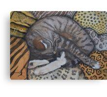 Sleeping Pussy Canvas Print