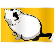 Egg Cat Poster