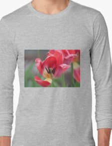 Peek inside Long Sleeve T-Shirt